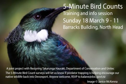 Bird count flyer